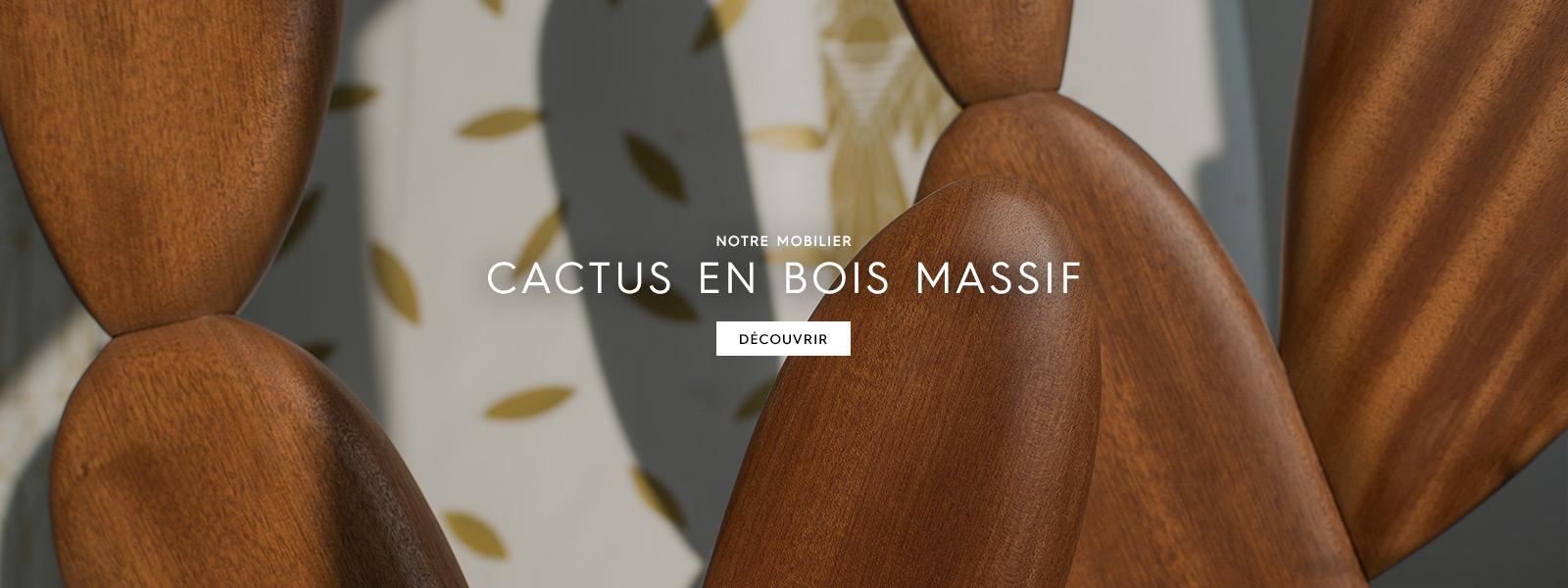 hp-1600x600-cactusbois